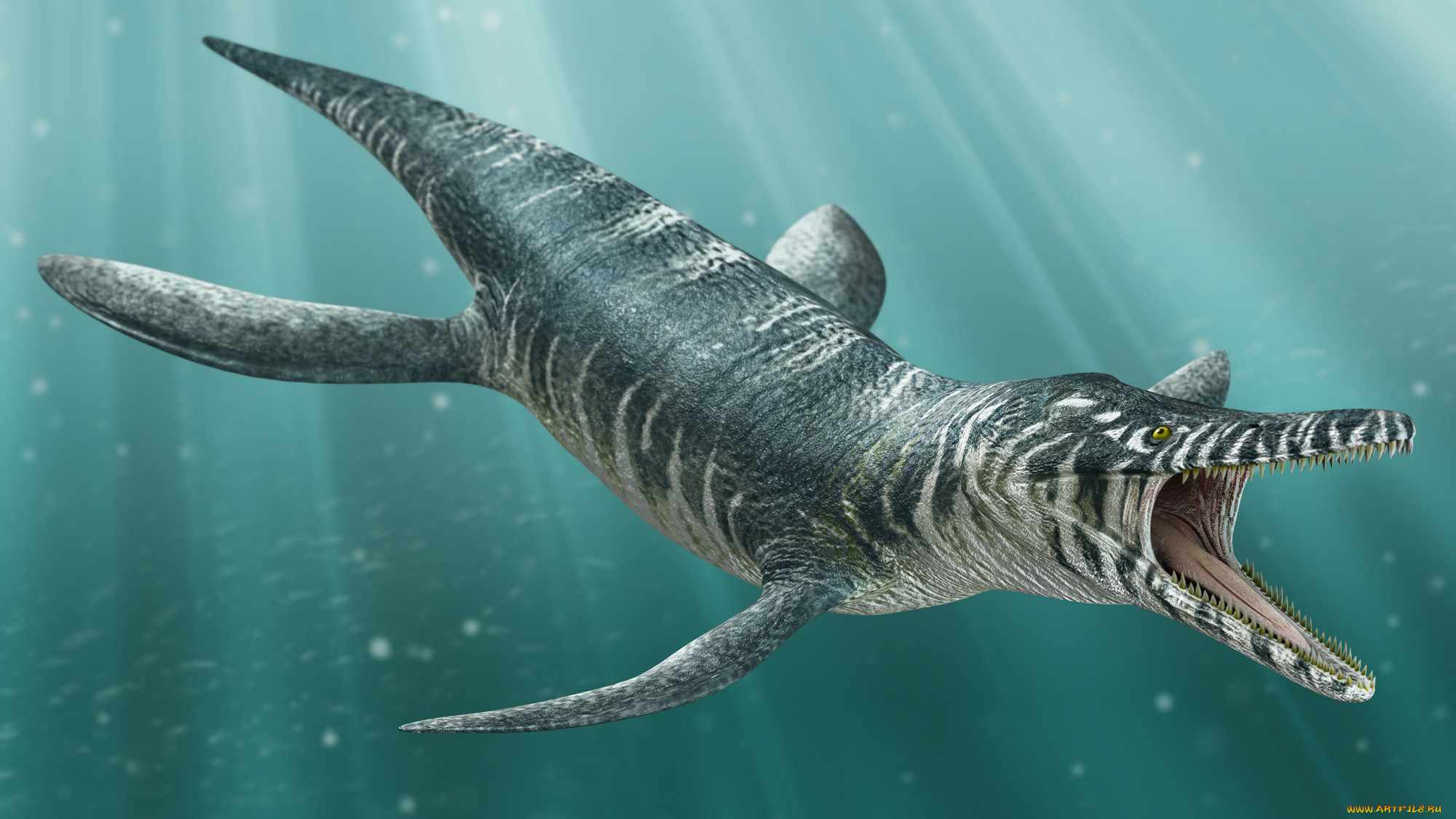 Картинки самых вымирающих животных водоплавающих